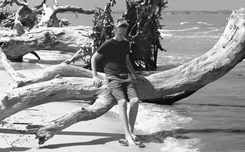 Driftwood Beach, Jekyll Island, Georgia